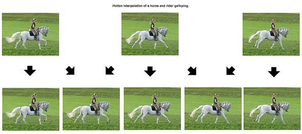 Motion-Interpolation-Chart.jpg